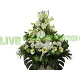 AFF010 -默禱,  白掌,百合,葉牡丹,太陽花及小菊高架悼念花籃